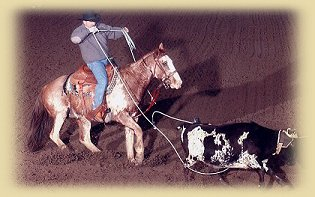 Ed Minor, Gordon Nebraska,  Professional Roper & Rancher